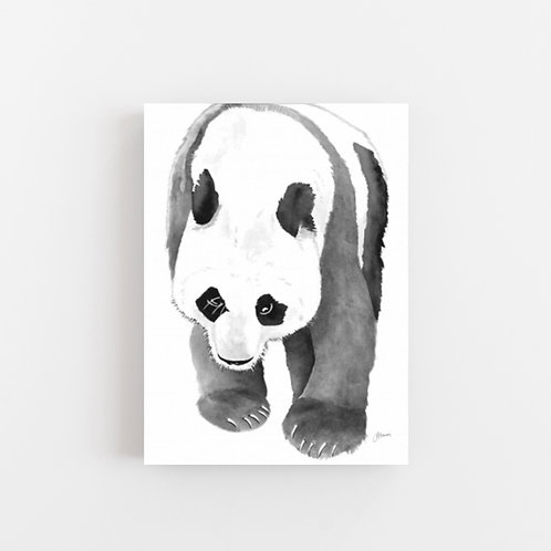 Bracey the Panda Bear Wall Art | CANVAS