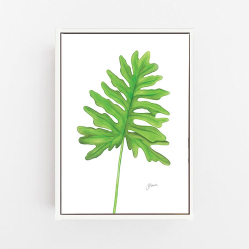 Philodendron Living Wall Art | CANVAS