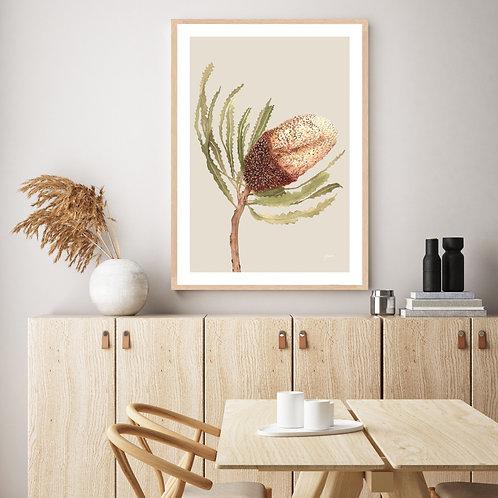 Banksia Native Living Art Flower 2 in Ivory Fine Art | FRAMED