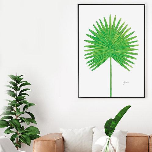 Fan Palm Living Art Leaf Print