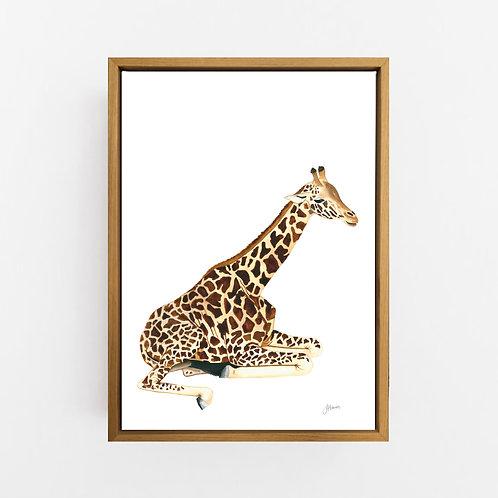 Geoffrey the Baby Giraffe Wall Art | CANVAS