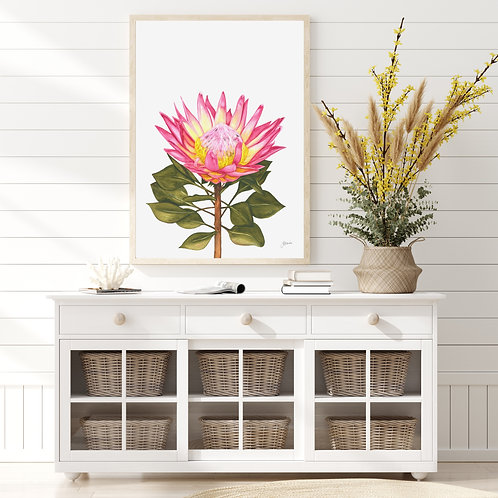 Protea Living Wall Art | FRAMED