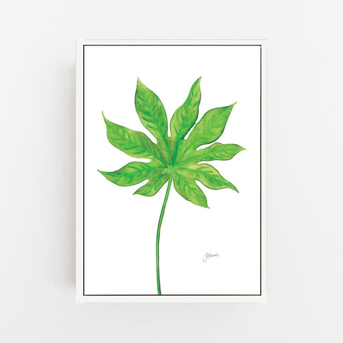 Aralia Living Wall Art | CANVAS