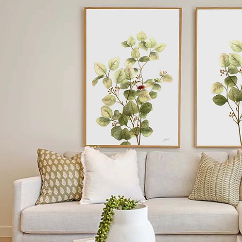Eucalyptus Native Living Art 3 in White Art Print