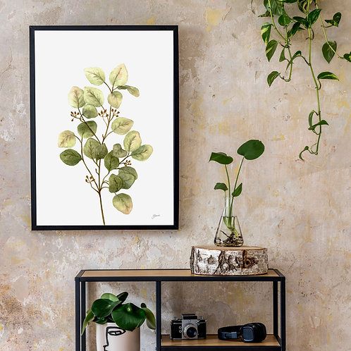 Eucalyptus Native Living Art 1 in White Art Print