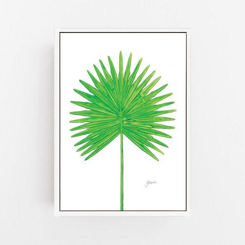 Fan Palm Living Wall Art   CANVAS