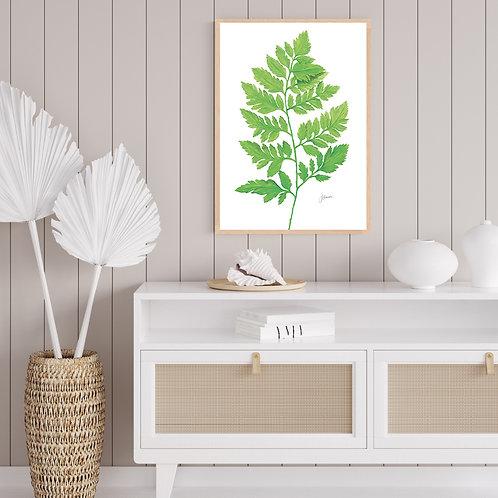 Lush Fern Living Wall Art | FRAMED