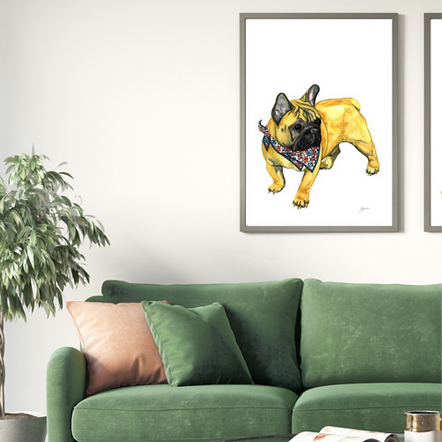 Louie the French Bulldog Fine Art Print | FRAMED