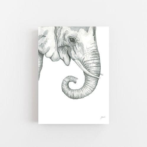 Eva the Elephant Wall Art | CANVAS