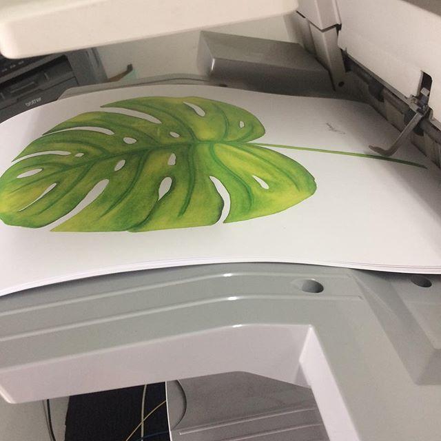 Test prints on the _canonaustralia ImagePRESS C7000VP digital press_So excited !!!!_._._