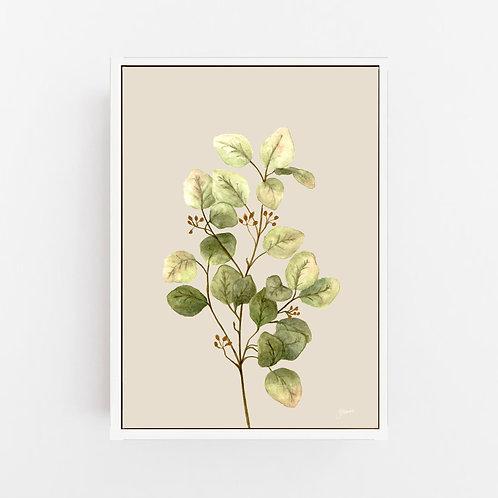 Eucalyptus Native Living Art 1 in Ivory Art Print | CANVAS