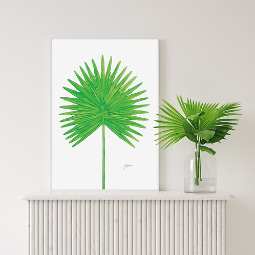 Fan Palm Living Wall Art | FRAMED