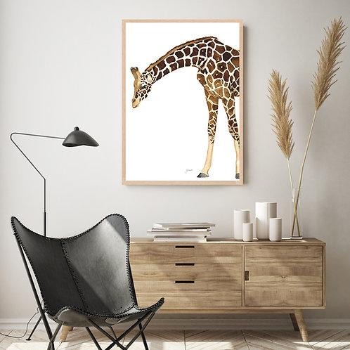 Amber the Giraffe Fine Art Print | FRAMED
