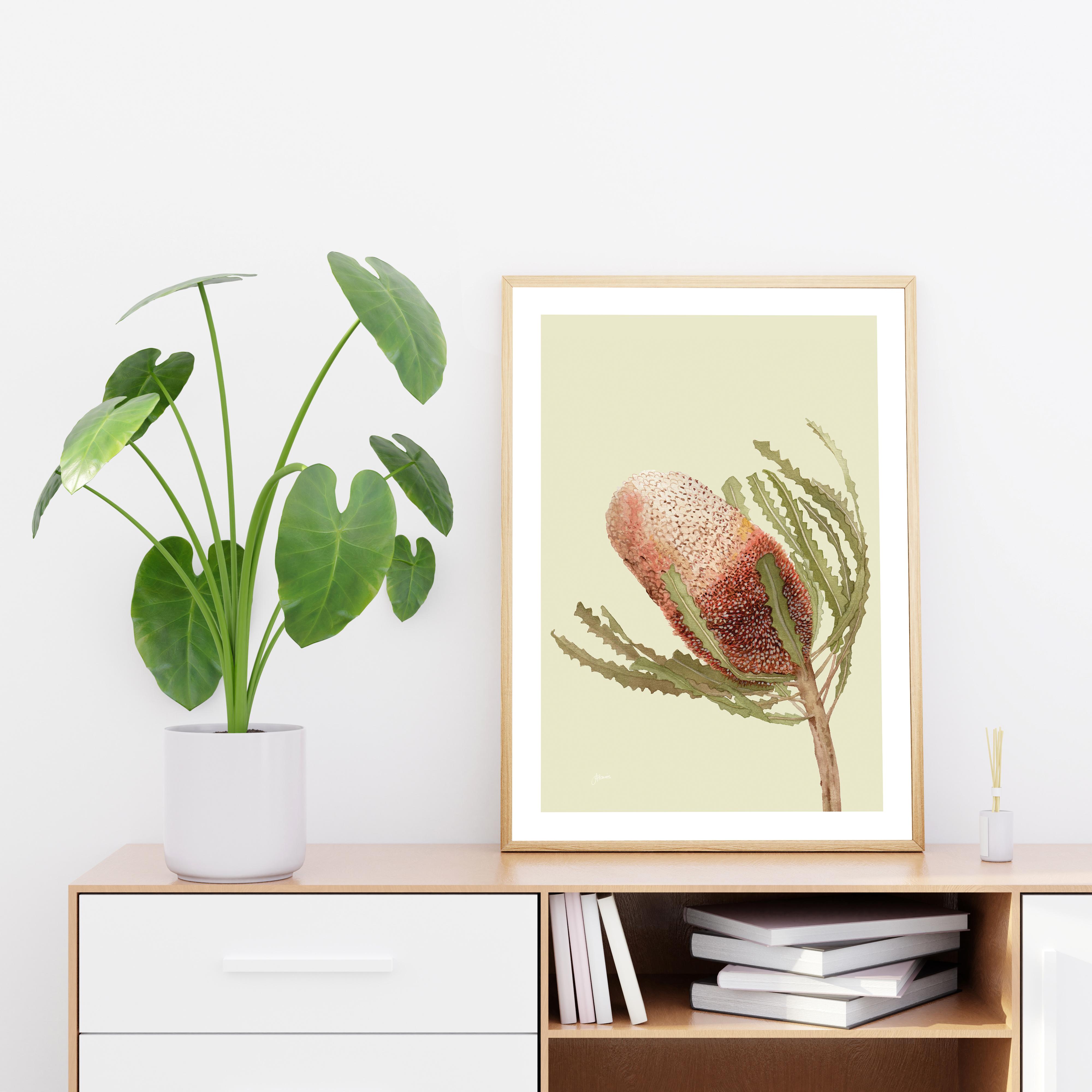 Banksia Native Living Art Flower 1 in Pale Sage Art Print