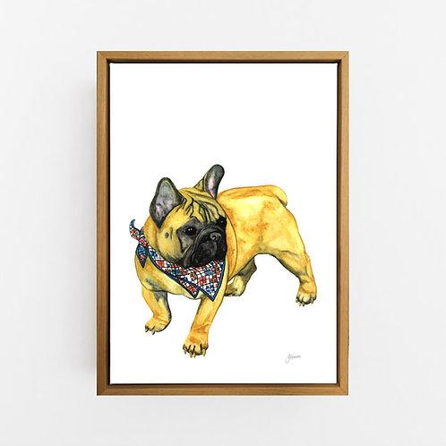 Louie the French Bulldog Wall Art | CANVAS