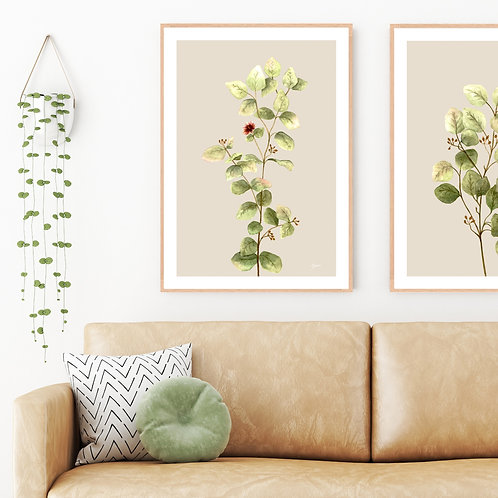 Eucalyptus Native Living Art 2 in Ivory Wall Art | FRAMED