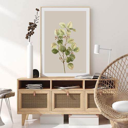 Eucalyptus Native Living Art 1 in Ivory Wall Art | FRAMED