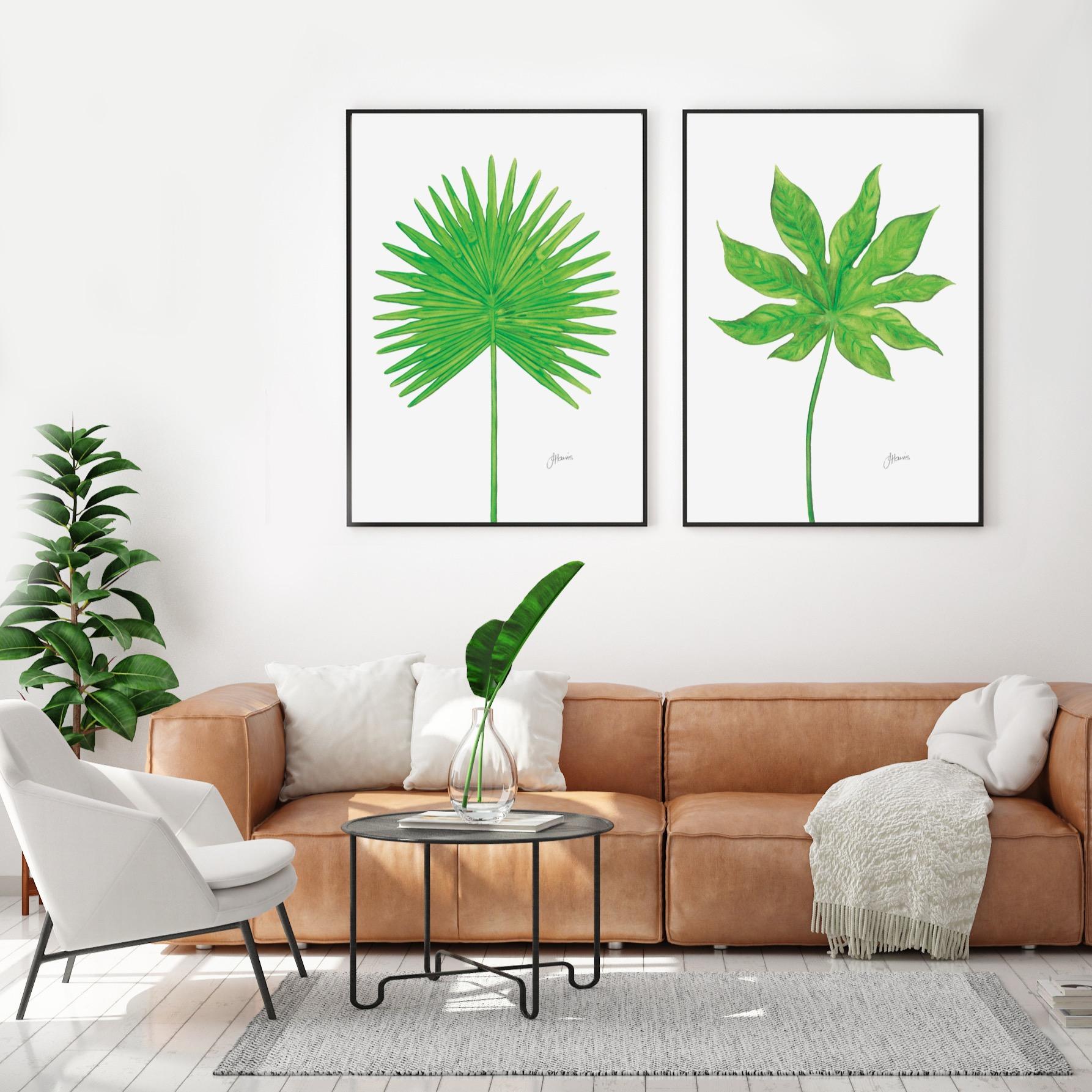 Fan & Aralia Living Art