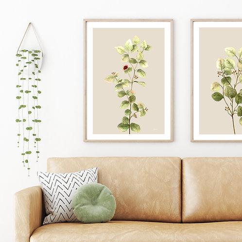 Eucalyptus Native Living Art 2 in Ivory Art Print