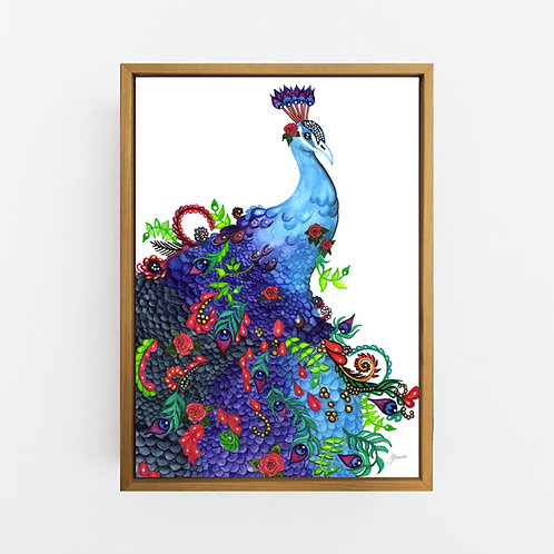 Jazzy the Colourful Peacock Print Wall Art | CANVAS