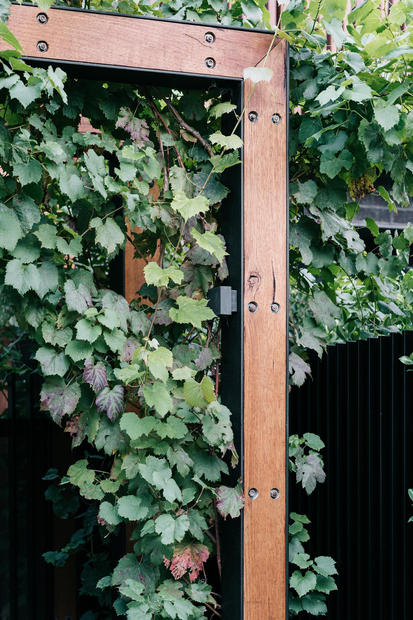 Manningtree Road, Hawthorn_low res-15.jp