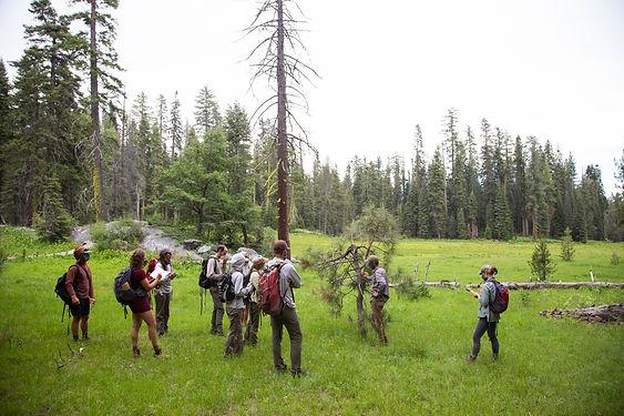 Group Around Bear Tree.jpg