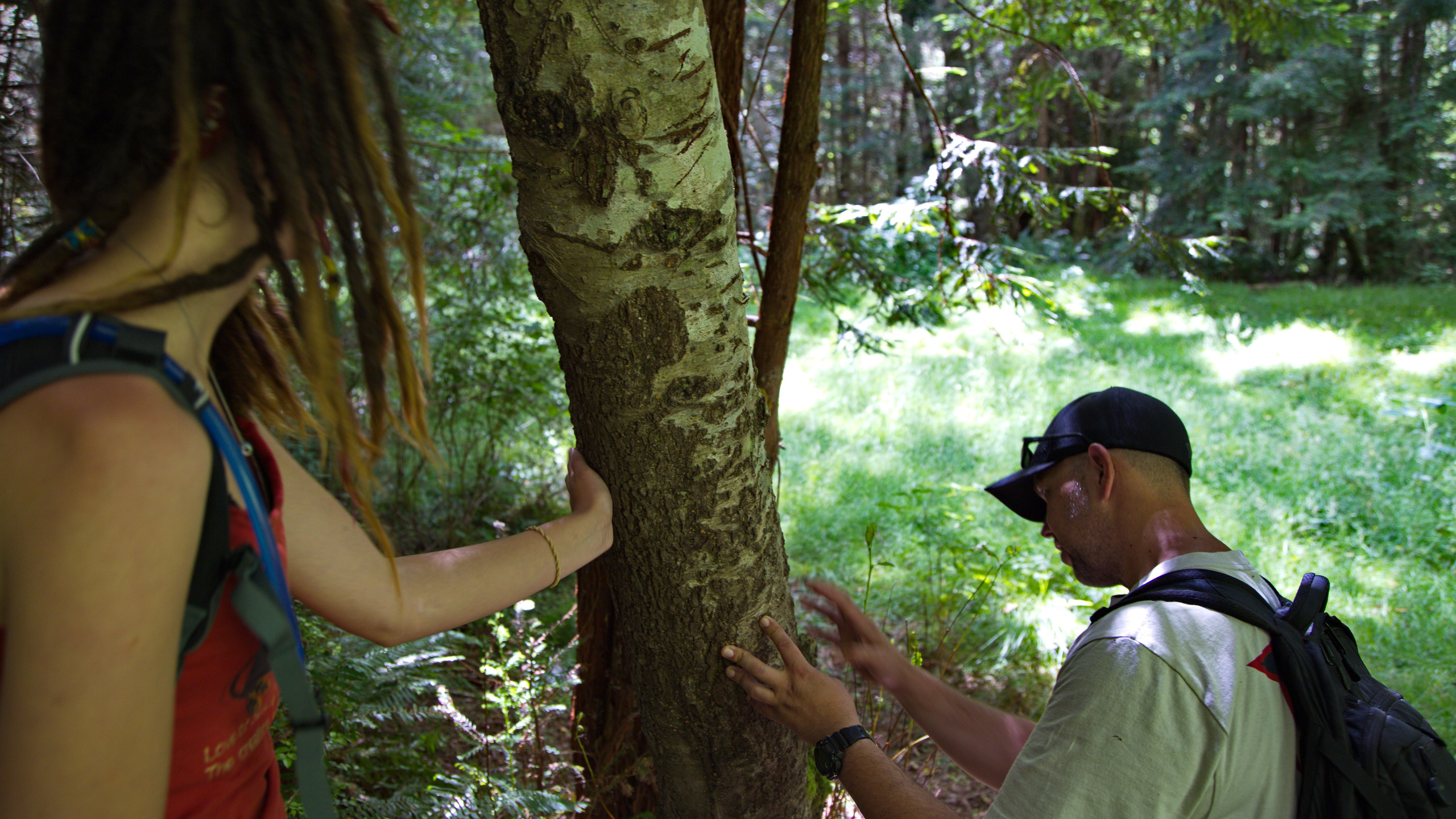 Clinton and Cailey examine the years of claw and bite marks accumulated on the bark of this red alder.