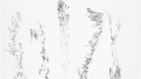 """Ólafur  Arnalds  """"Take  My  Leave  Of  You"""" (5 variations)"""