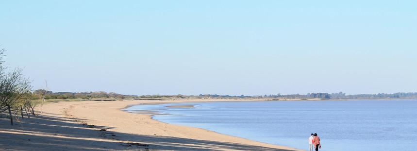 Playa Cosmopolita