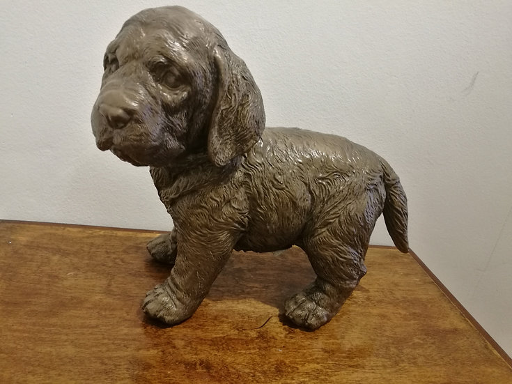 Labrador Puppy Bonze