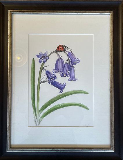 BLUEBELL AND LADYBIRD
