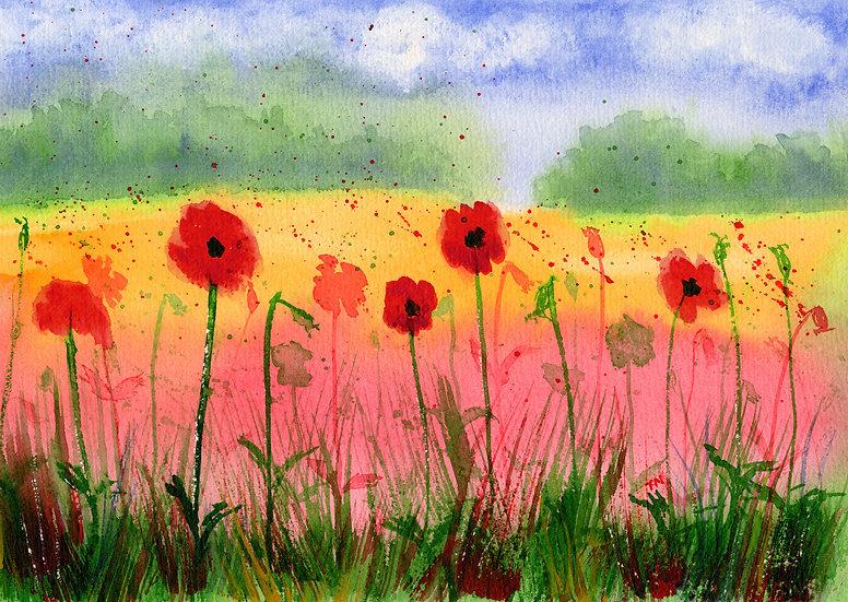 Poppy Summer