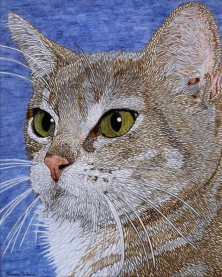 Alison Perkins Cat Print