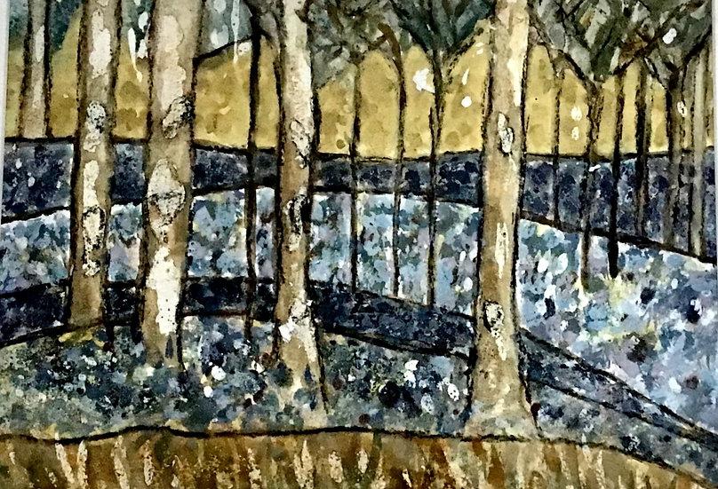 Ashridge Bluebells I