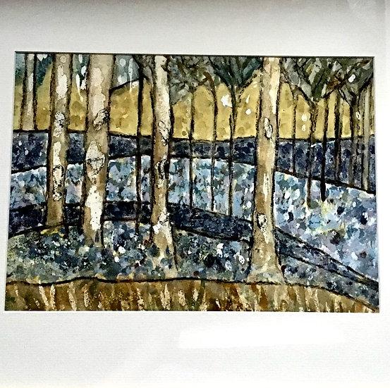 Ashridge Bluebells II