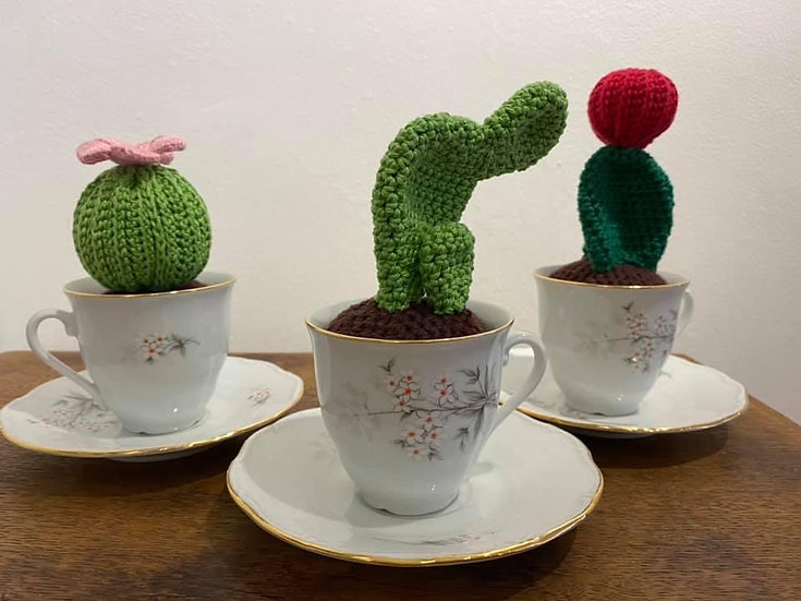Cacti and Saucer