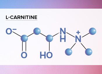 Польза L-Карнетина