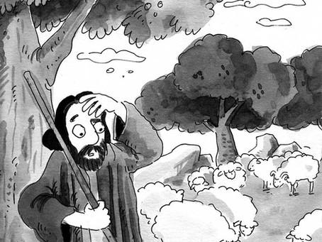 Koyunları saymak