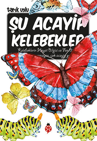 AWDLRLYKBR422020213931_Su-Acayip-Kelebek