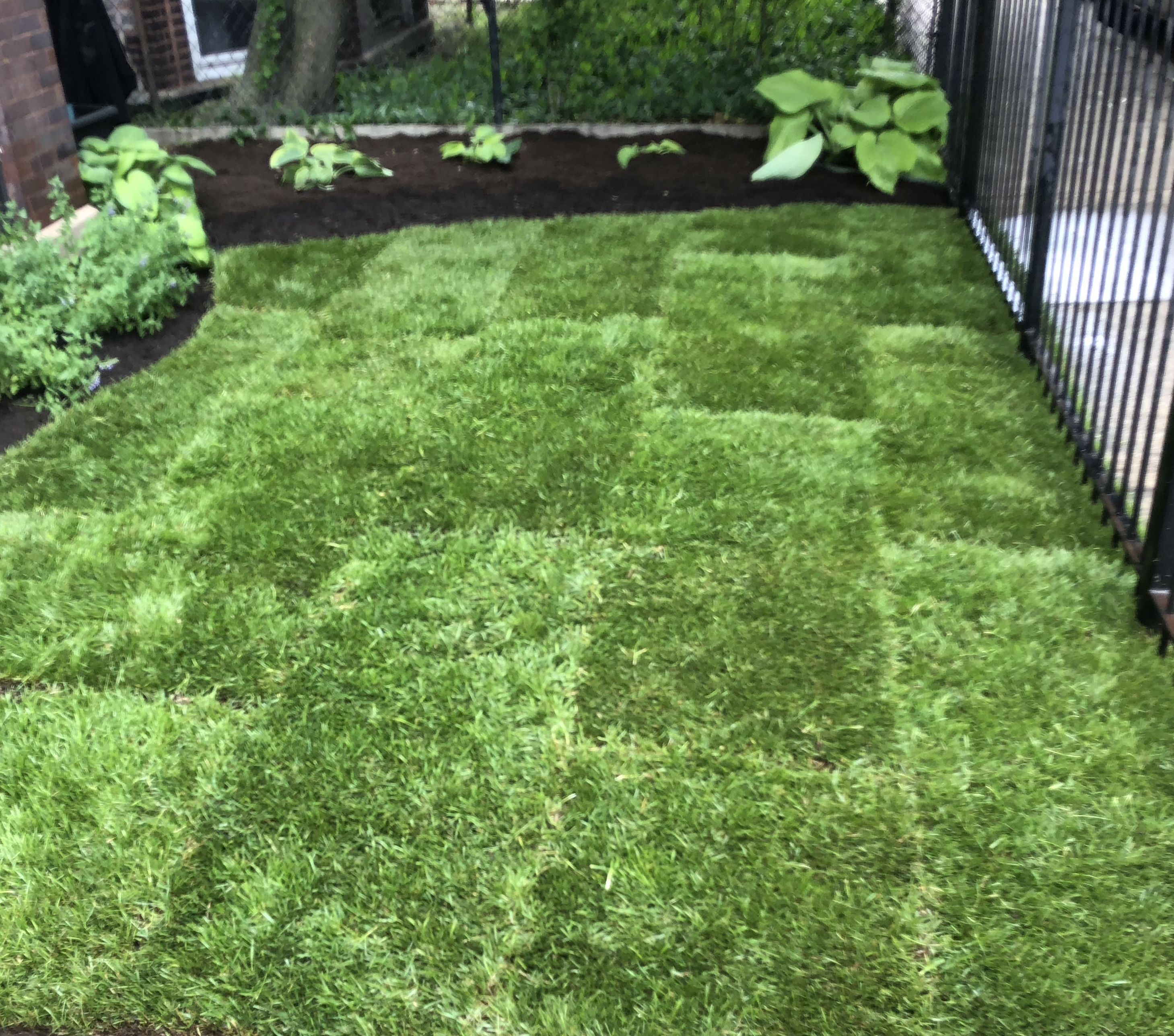 Sod & Mulch Installation