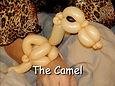 Camel - VKTBe.jpg