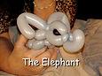 Elephant - VKTBe.jpg