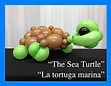 Sea Turtle Thumbnail.jpg
