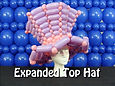 Expanded Top Hat - WWHG2.jpg