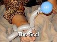 Seal - VKTBe.jpg