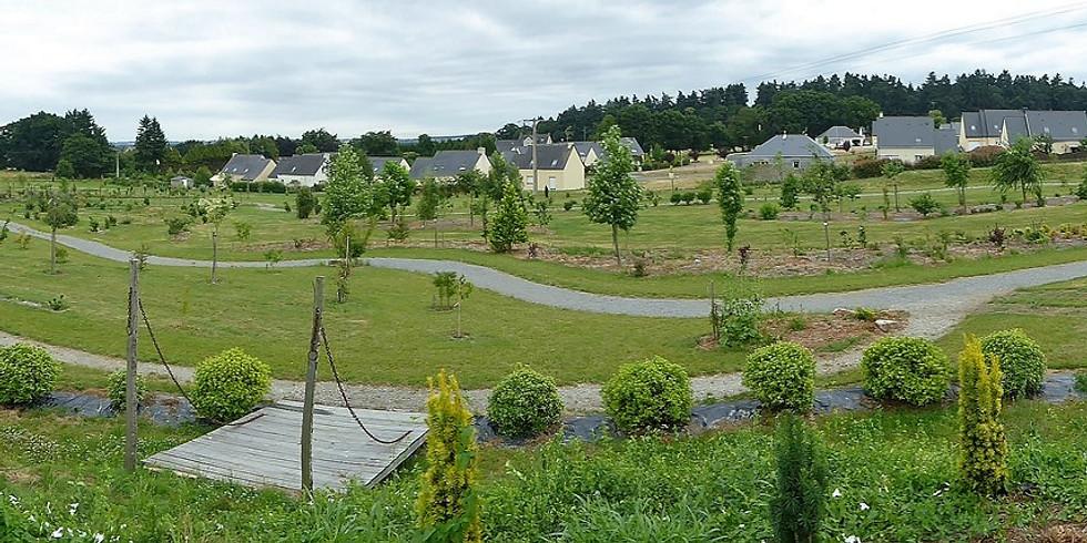 Journée du Patrimoine de Pays et des Moulins - Visite de L'arboretum (1)