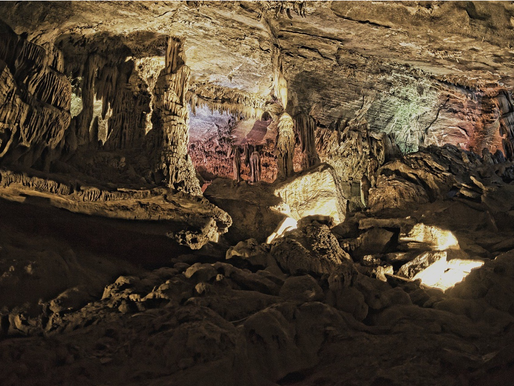 """""""Cave In"""" and Visit Penn's Cave and Wildlife Park"""