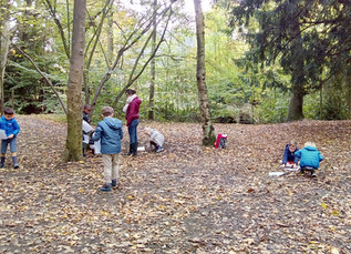 1B Herfst in het bos (07/11/19)