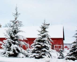 winter-barn-556697_1280_edited_edited.jp