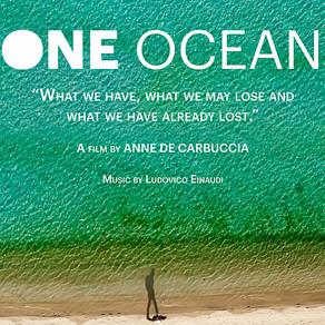Sarasota Film Festival - One Ocean Interview